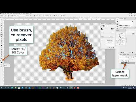 How to create a Transparent Background Image in Photoshop | Photo Editing Service Provider