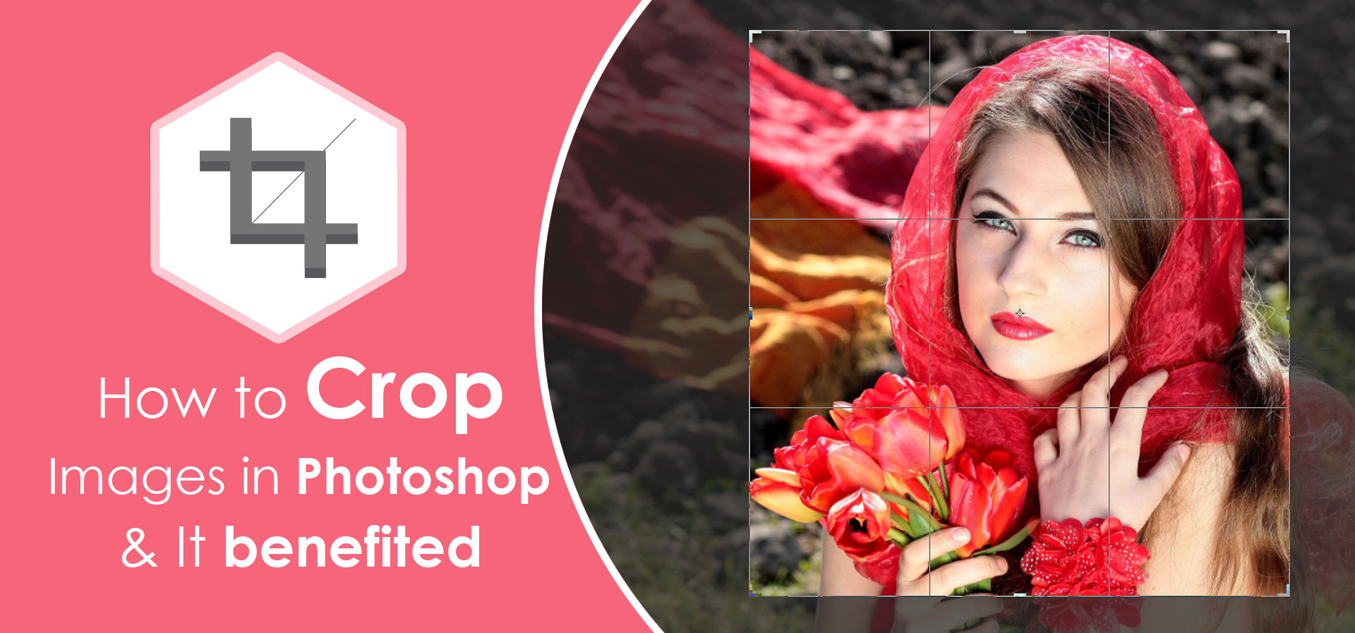How to Crop Images in Photoshop & It benefited.