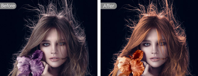 Image Background Removal Service with Super Complex Shapes