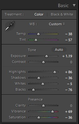 lightroom basic color custom panel