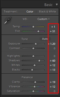 lightroom basic color panel