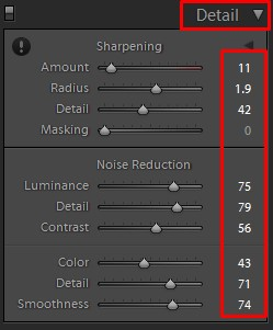 lightroom detail tool panel