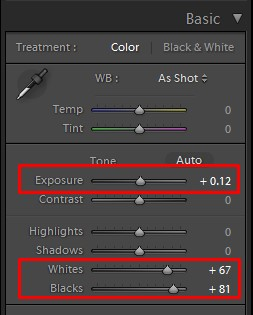 lightroom exposure for basic color palette