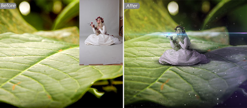 Photoshop Photo Composite